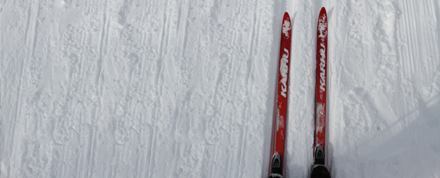Picture of Skis in Snow.