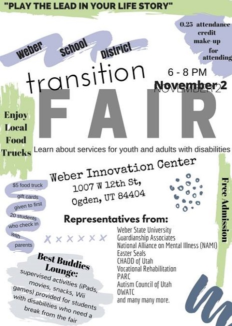 transitionfair